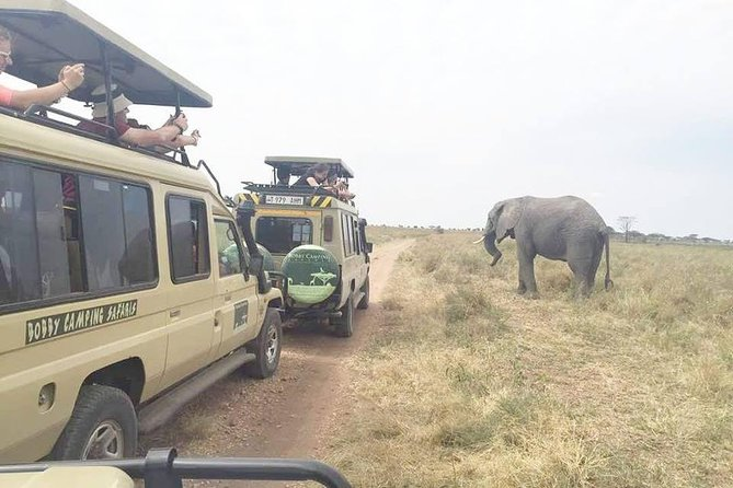 3 Days Tanzania Lodge Adventure