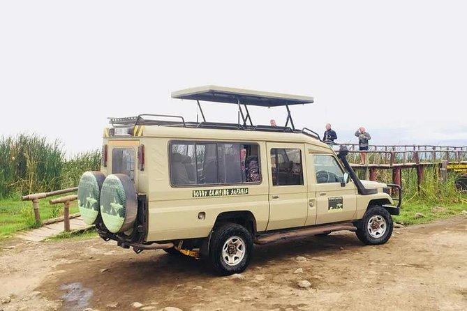 4 Days Tanzania Basic Camping Adventure