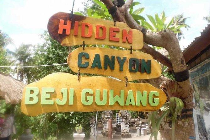 Guwang Hidden Canyon And Tegenungan Waterfall