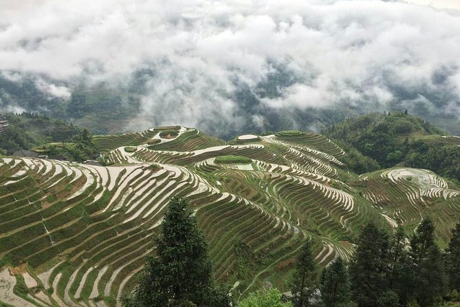 Private Longji Rice Terrace One Day Tour