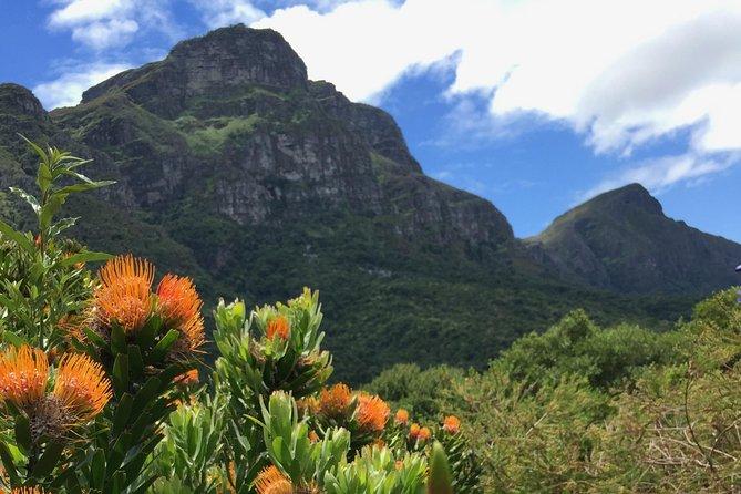Kirstenbosch National Botanical Gardens Selbstgeführte Audiotour mit VoiceMap