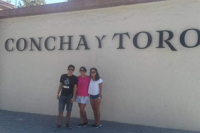 Private Wine Tasting at Concha y Toro Vineyard from Santiago
