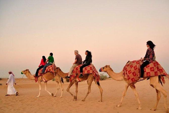 Dubai Desert Safari with Camel Riding and Belly Dance