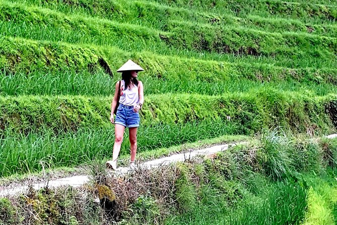 2-Days Hiking Private Tour at Longji Rice Terraces from Guilin or Yangshuo