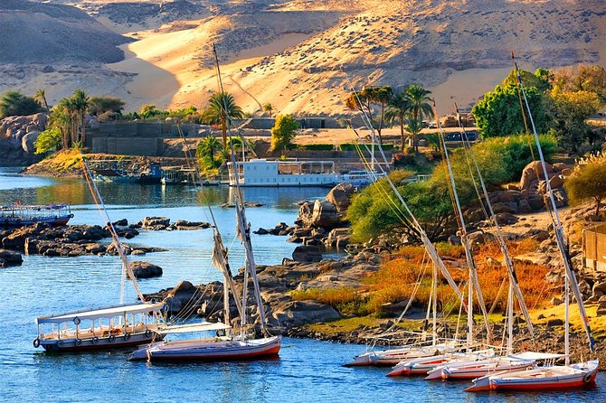 Private Tour to the Highlights of Aswan & Nubian Village from Luxor by Train photo 10