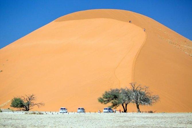 Epic Sossusvlei (tall red sand dunes) and Swakopmund Tour