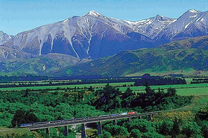 Lyttelton Shore Excursion: TranzAlpine and Arthurs Pass Tour
