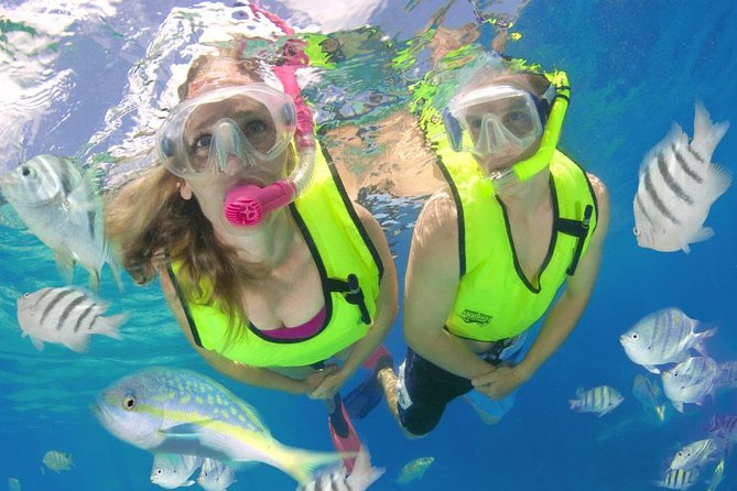Roatan Excursion: Snorkel Adventure/ Plus Sloth Park and Zip-Lining