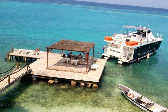 Transportation in Catamaran to Islas del Rosario towards Ecohotel