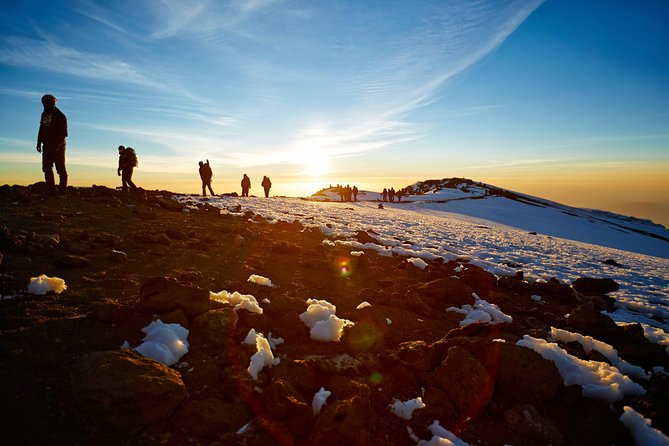 8 Days Kilimanjaro Trek, Lemosho Route