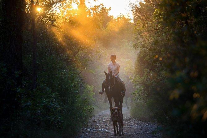 Horseback Riding in Konavle Region with Transport from Dubrovnik