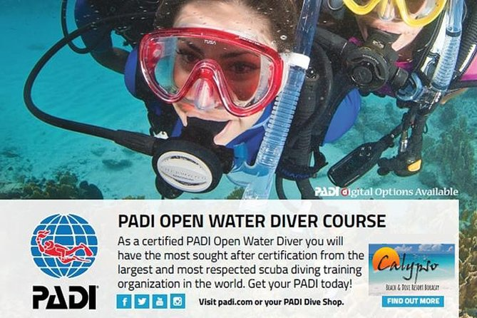 PADI Open Water Diver Course (3 days)   Philippines - Lonely Planet