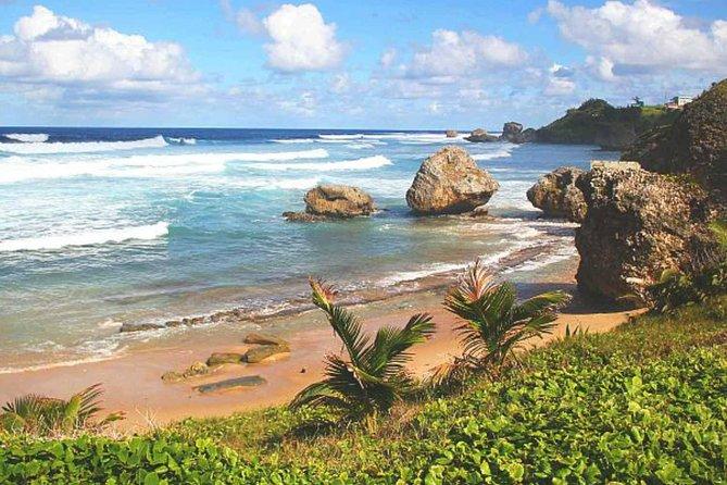 Barbados Private Custom Island Tour
