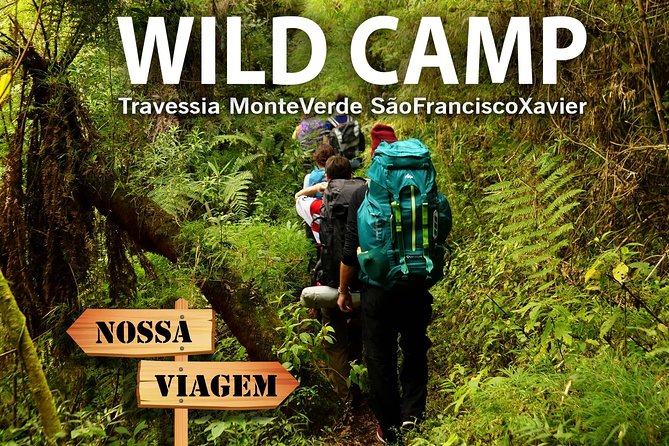 Wild Camping & Hiking in Mantiqueira's Forest