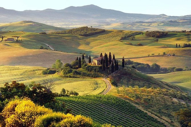 Tuscan Barbecue Party with Lunch and wine olive oil Tasting In Tuscany-Ultimate