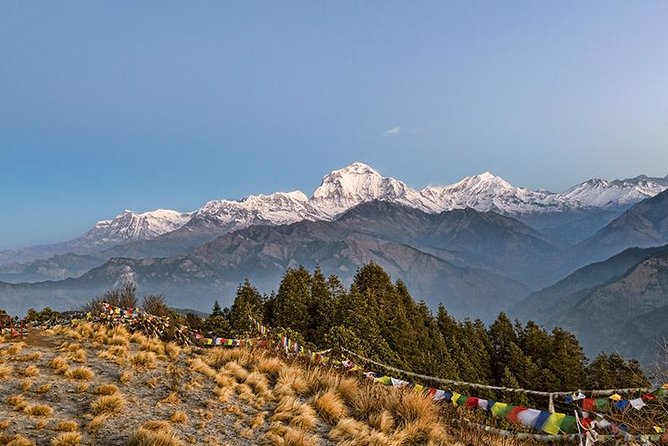 Poon Hill Trekking- A day to explore Nepal in a short time