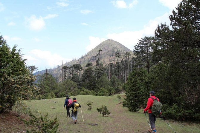 Bhutan Cultural Tour with Day Hikes