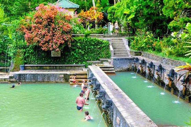 Nort Bali Tour