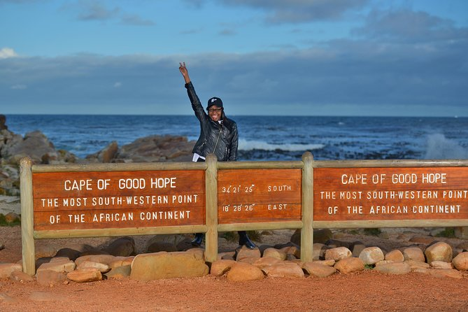 Private Cape of Good Hope and Penguins Tour with Luxury Mercedes or BMW Vehicle