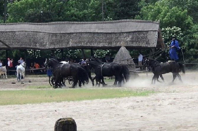 Private Puszta tour - with traditional horse show