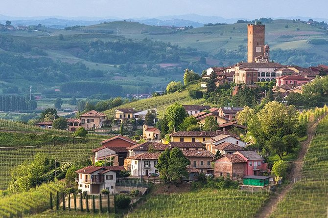 Piemonte Vineyards by Yourself from Turin - Luxury Van with English Chauffeur