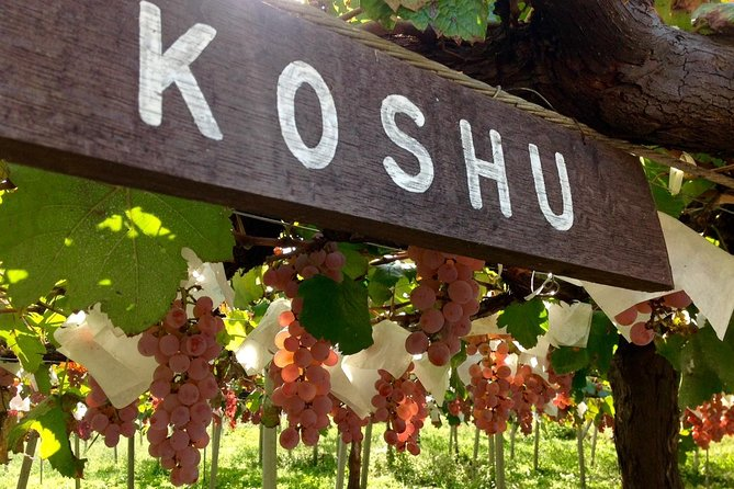 Koshu Wine Tasting and Vineyard Sightseeing Private Tour in Yamanashi
