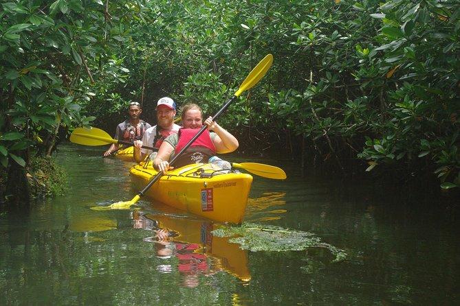 Samoan Cultural and Mangrove Eco Adventure