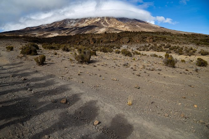 Landscape on Kilimanjaro