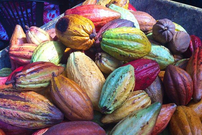 Chocolate and Cobblestones San Miguel De Allende Walking Tour
