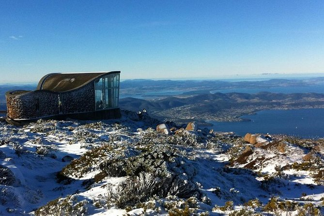 Mt Wellington Express Shuttle Bus with Hobart Sightseeing Tour