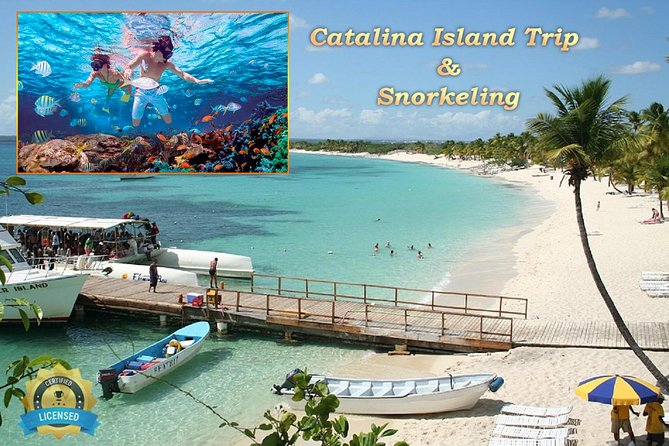 Catalina Island - Snorkeling