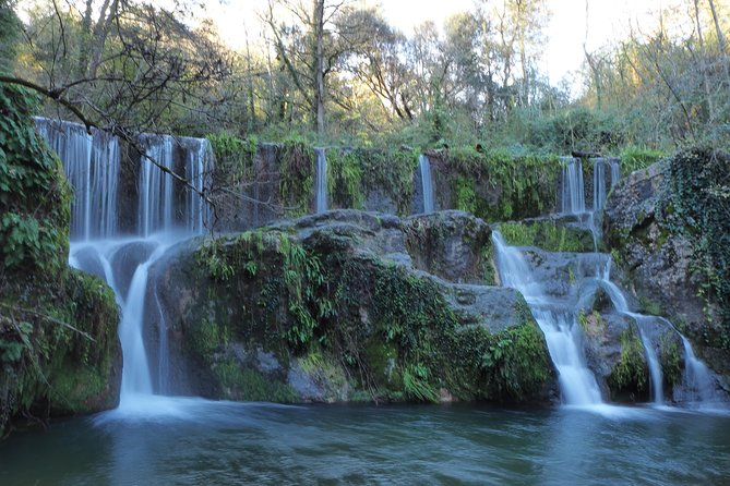 Volcanic Trekking: Volcano, Forest and Waterfall Day Trip from Girona with Lunch