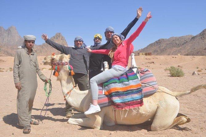 Safari Hurghada - Desert Safari Hurghada Egypt