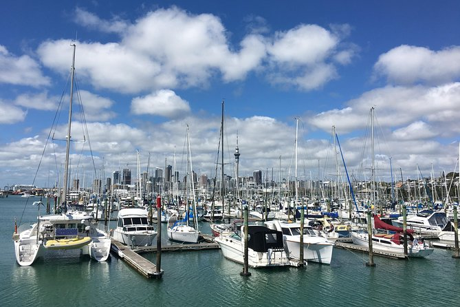 Cruise Ship Half Day Auckland and Devonport Tour