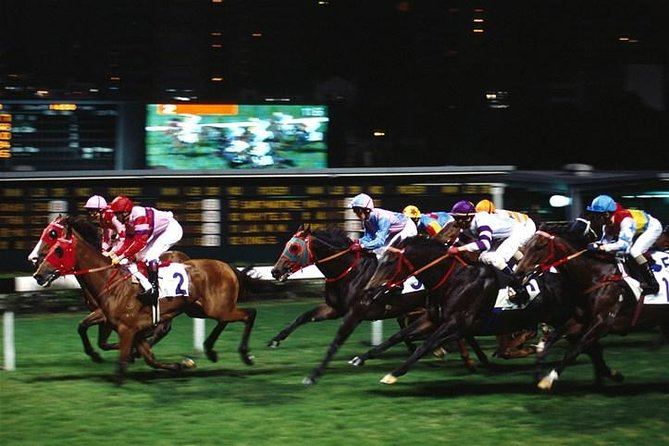 Hong Kong Horse Racing Tour photo 2
