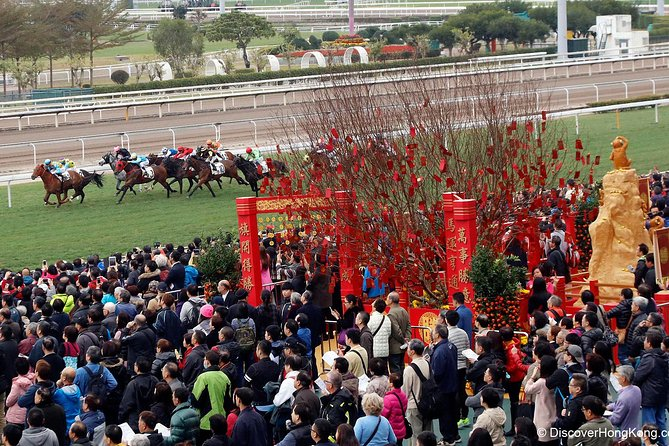 Hong Kong Horse Racing Tour photo 3