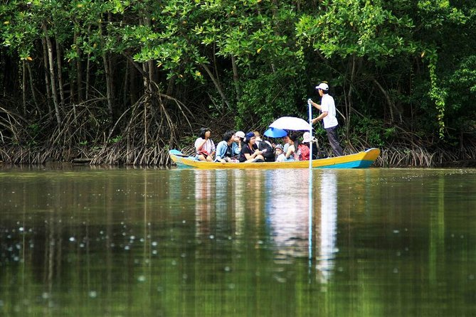 Ho Chi Minh City : Discover Biosphere Reserve Can Gio Mangrove Forest