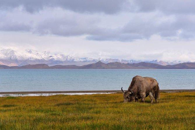 Karakul Lake, Pamir