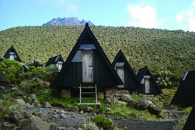 Mount Kilimanjaro climbing, 6 Days Marangu Route. photo 2
