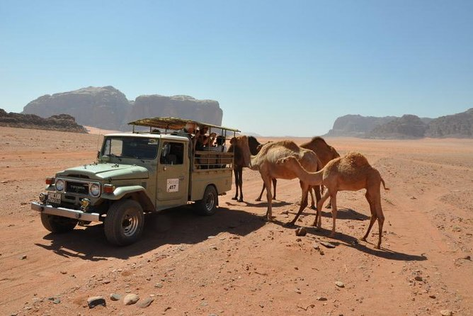 Wadi Rum half day Jeep tour from Aqaba private tour