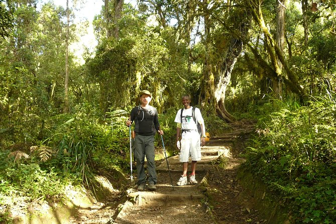 Kilimanjaro Climb Lemosho Route(6 Days) photo 5