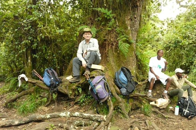 Kilimanjaro Climb Lemosho Route(6 Days) photo 2