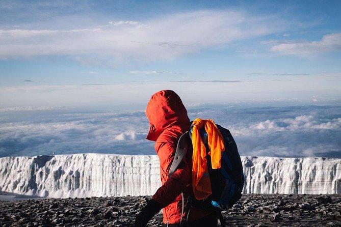 Mount Kilimanjaro-Rongai Route 7 days Trekking