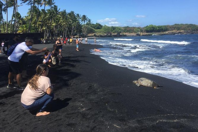 Small-Group Big Island Tour: Hawaii Volcanoes National Park and Kona Coffee Farm