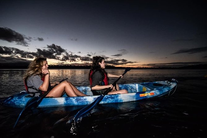 San Juan Bioluminescent Bay Glass Bottom Kayak Night Tour 2021