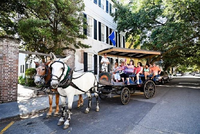 Private Carriage Tour of Historic Charleston