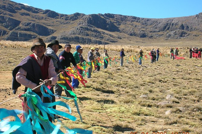 Half-Day Pampa Galeras Reserve Tour from Nazca