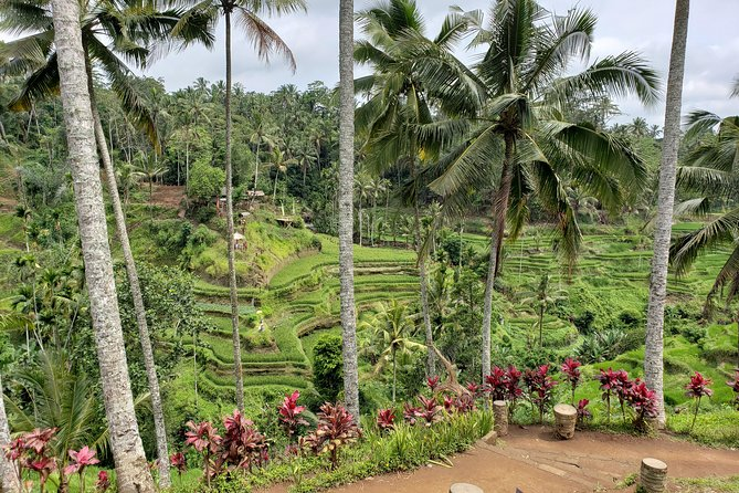 Ubud Area Full Day All Inclusive Tour