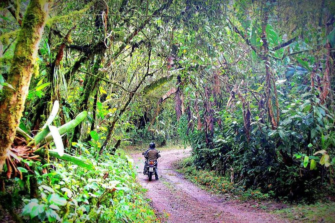 Self-Drive Coffee & Cloudforest Motorcycle Tour to Mindo
