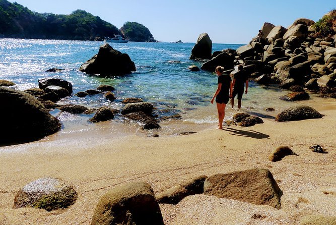 Hiking La Roqueta Island, Lunch & Drinks, Downtown, Cliff Divers 5 Hours Tour